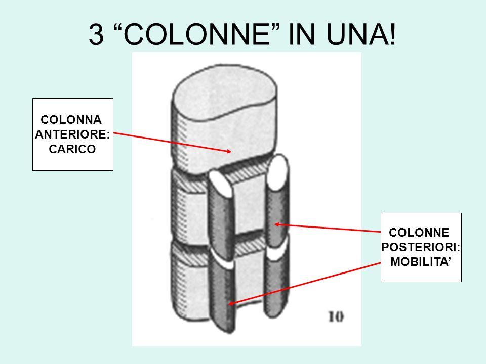 3 COLONNE IN UNA! COLONNA ANTERIORE: CARICO COLONNE POSTERIORI: