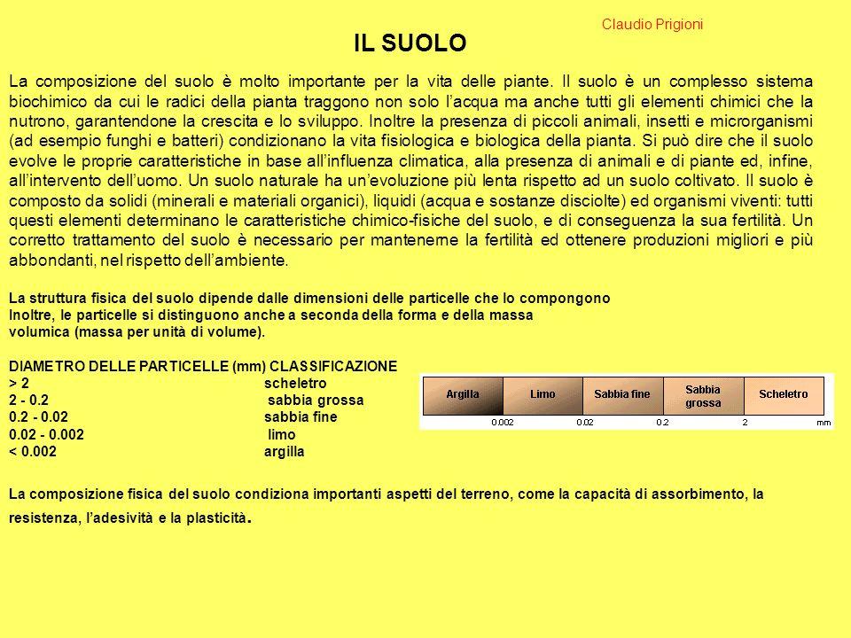 Claudio Prigioni IL SUOLO.
