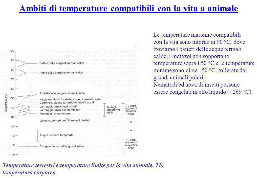 Ambiti di temperature compatibili con la vita a animale
