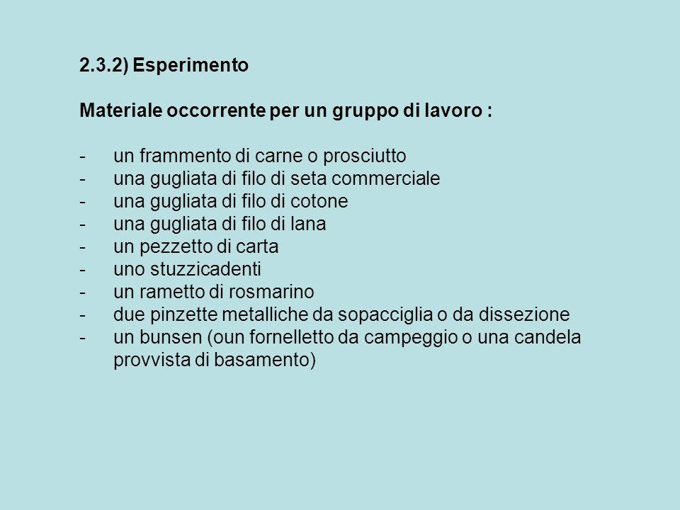 2.3.2) Esperimento Materiale occorrente per un gruppo di lavoro : - un frammento di carne o prosciutto.