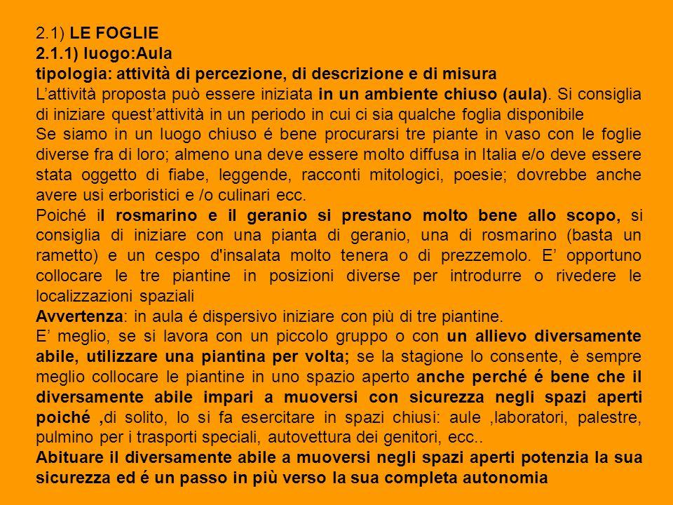 2.1) LE FOGLIE 2.1.1) luogo:Aula. tipologia: attività di percezione, di descrizione e di misura.