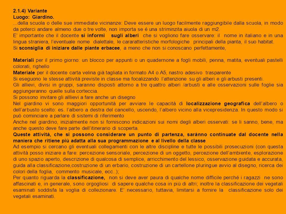 2.1.4) Variante Luogo: Giardino.