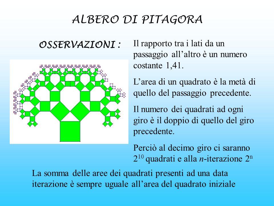 ALBERO DI PITAGORA Il rapporto tra i lati da un passaggio all'altro è un numero costante 1,41.