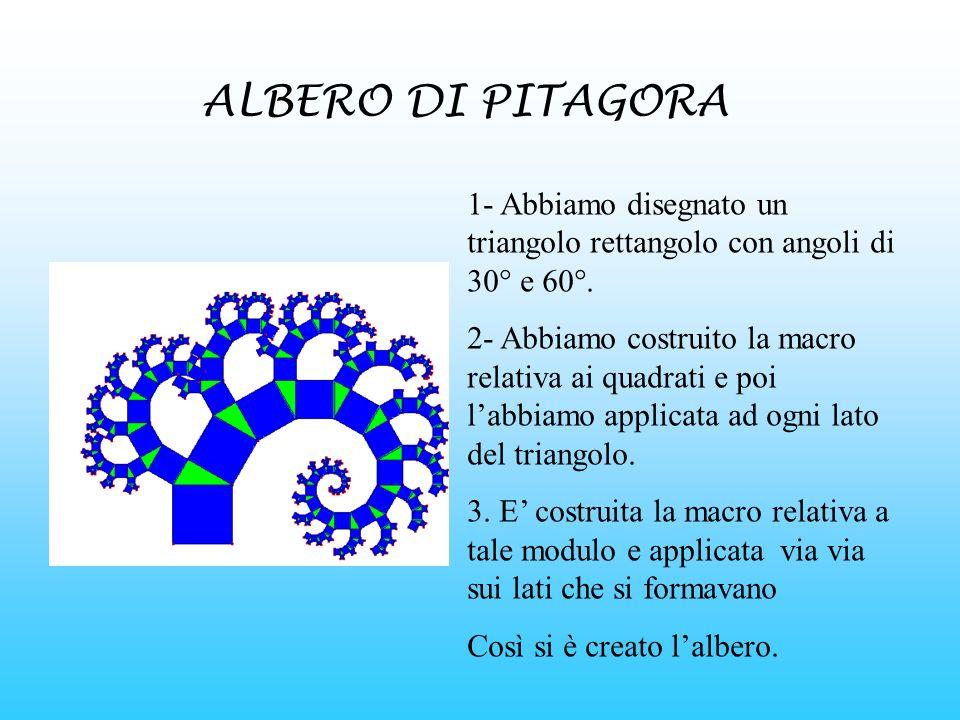 ALBERO DI PITAGORA 1- Abbiamo disegnato un triangolo rettangolo con angoli di 30° e 60°.