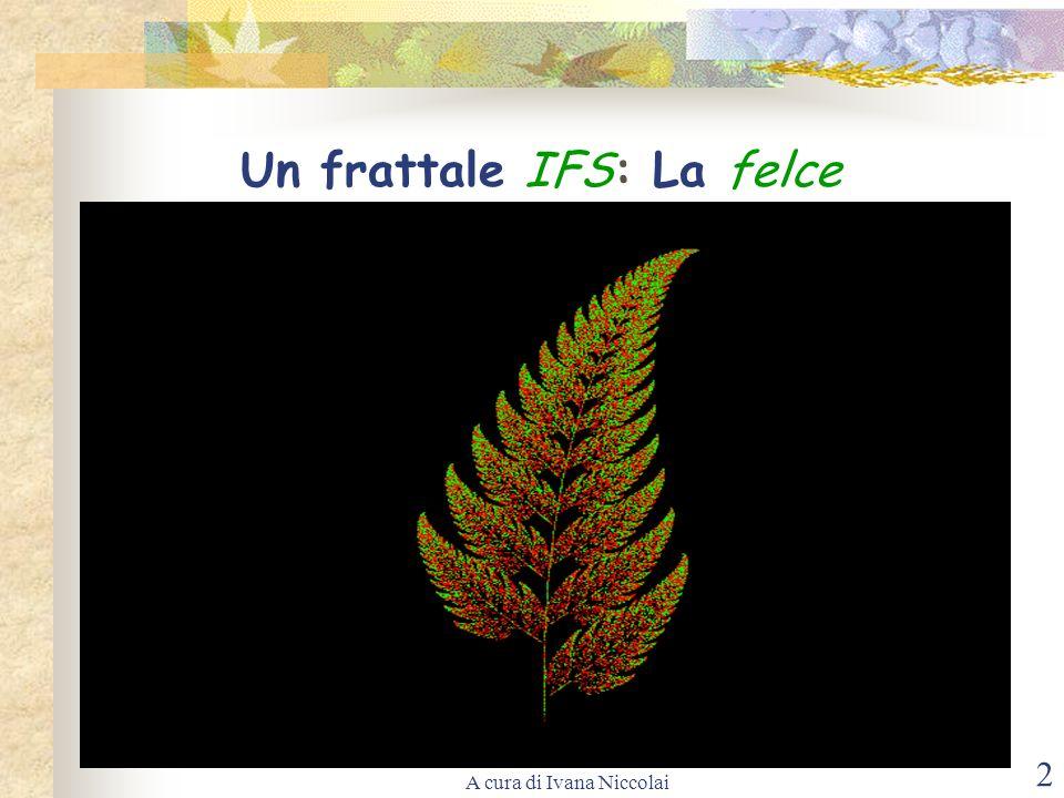 Un frattale IFS: La felce