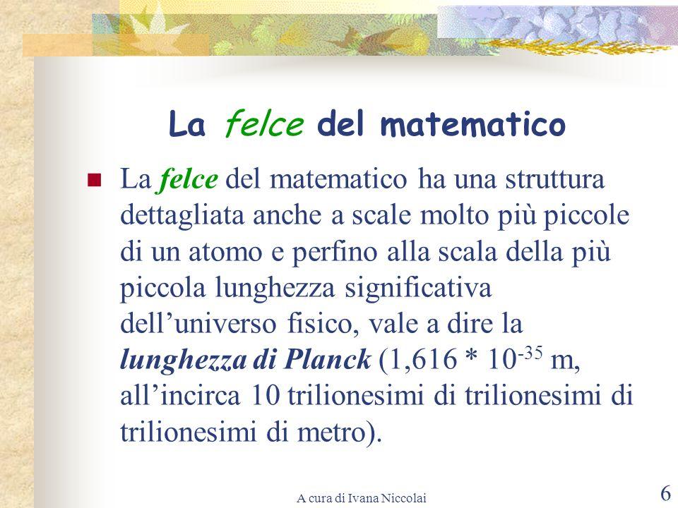 La felce del matematico