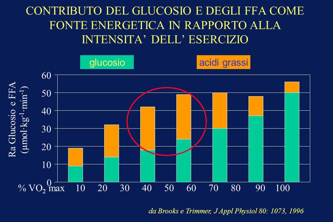 CONTRIBUTO DEL GLUCOSIO E DEGLI FFA COME FONTE ENERGETICA IN RAPPORTO ALLA INTENSITA' DELL' ESERCIZIO