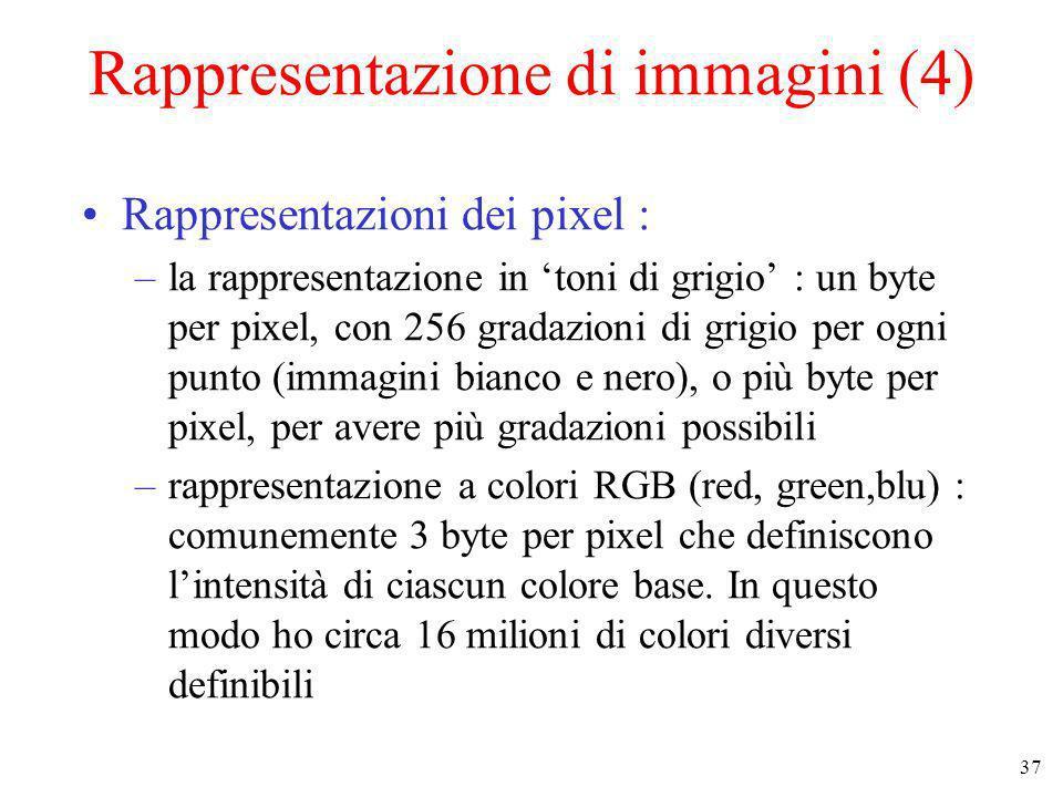 Rappresentazione di immagini (4)