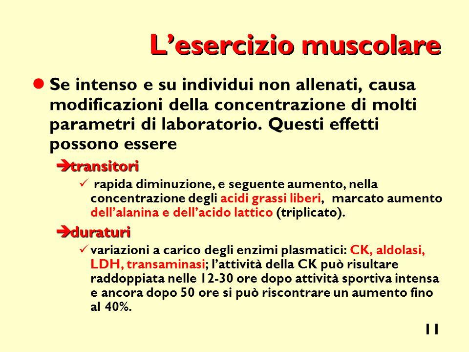 L'esercizio muscolare