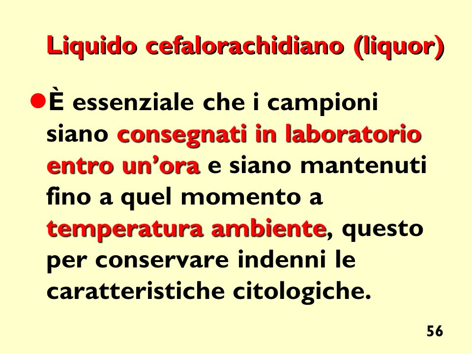 Liquido cefalorachidiano (liquor)