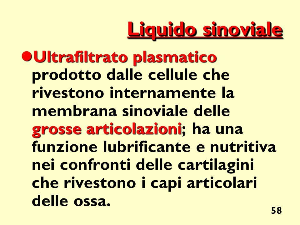 Liquido sinoviale