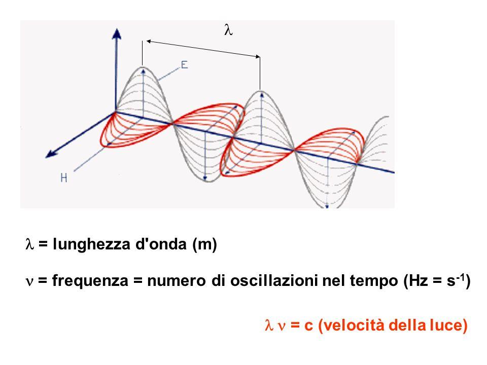 l l = lunghezza d onda (m) n = frequenza = numero di oscillazioni nel tempo (Hz = s-1) l n = c (velocità della luce)