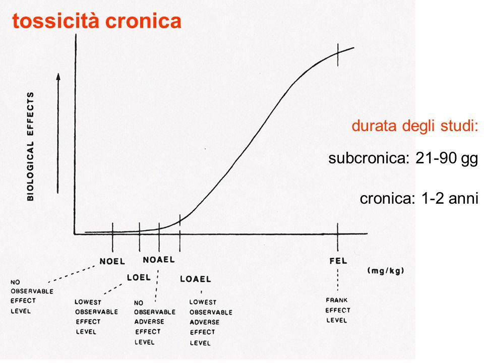 tossicità cronica durata degli studi: subcronica: 21-90 gg