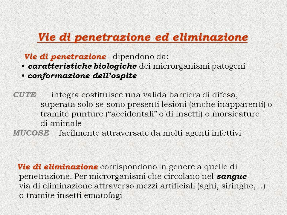 Vie di penetrazione ed eliminazione