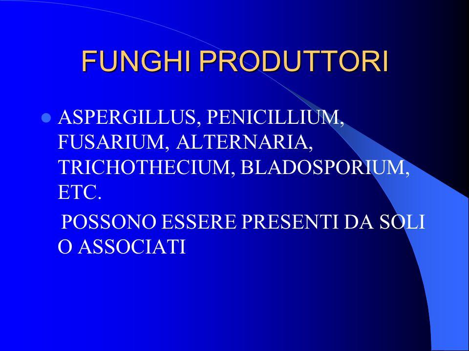FUNGHI PRODUTTORI ASPERGILLUS, PENICILLIUM, FUSARIUM, ALTERNARIA, TRICHOTHECIUM, BLADOSPORIUM, ETC.