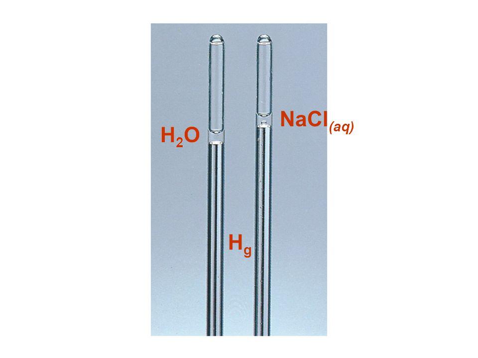 NaCl(aq) H2O H2O Hg