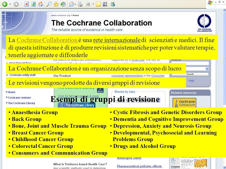 Esempi di gruppi di revisione