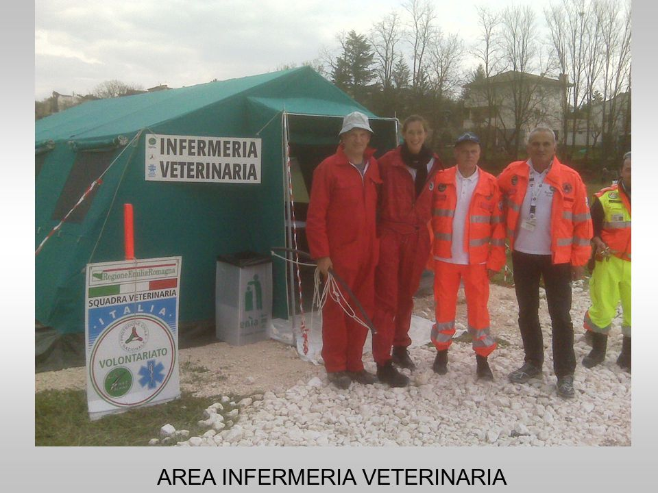 AREA INFERMERIA VETERINARIA