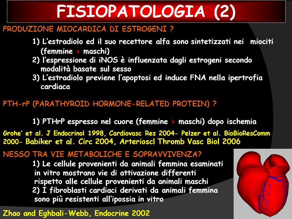 FISIOPATOLOGIA (2) PRODUZIONE MIOCARDICA DI ESTROGENI 1) L'estradiolo ed il suo recettore alfa sono sintetizzati nei miociti.