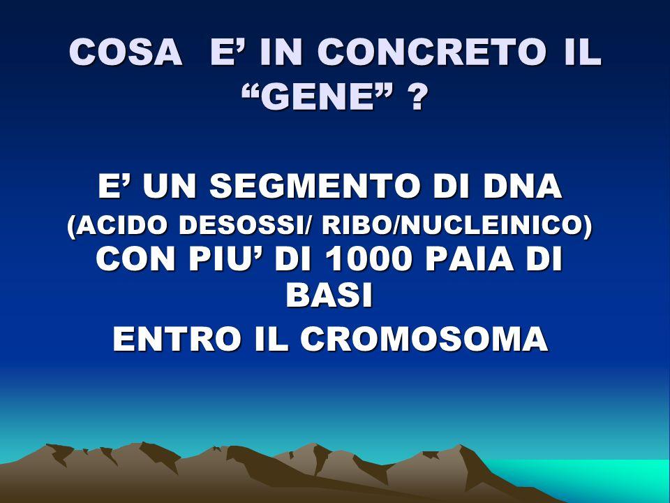 GENETICA LA SCIENZA DEL GENE