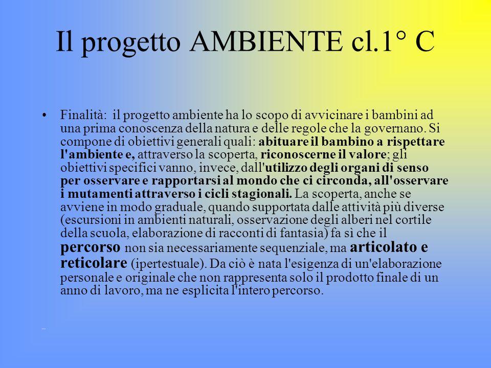 Il progetto AMBIENTE cl.1° C