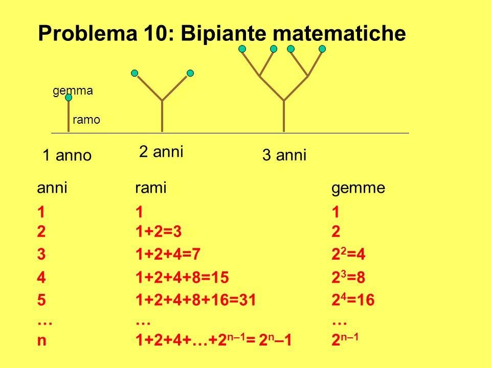 Problema 10: Bipiante matematiche