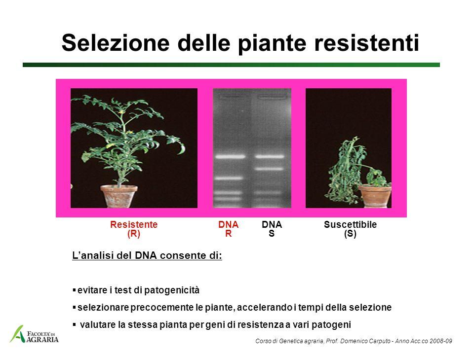 Selezione delle piante resistenti