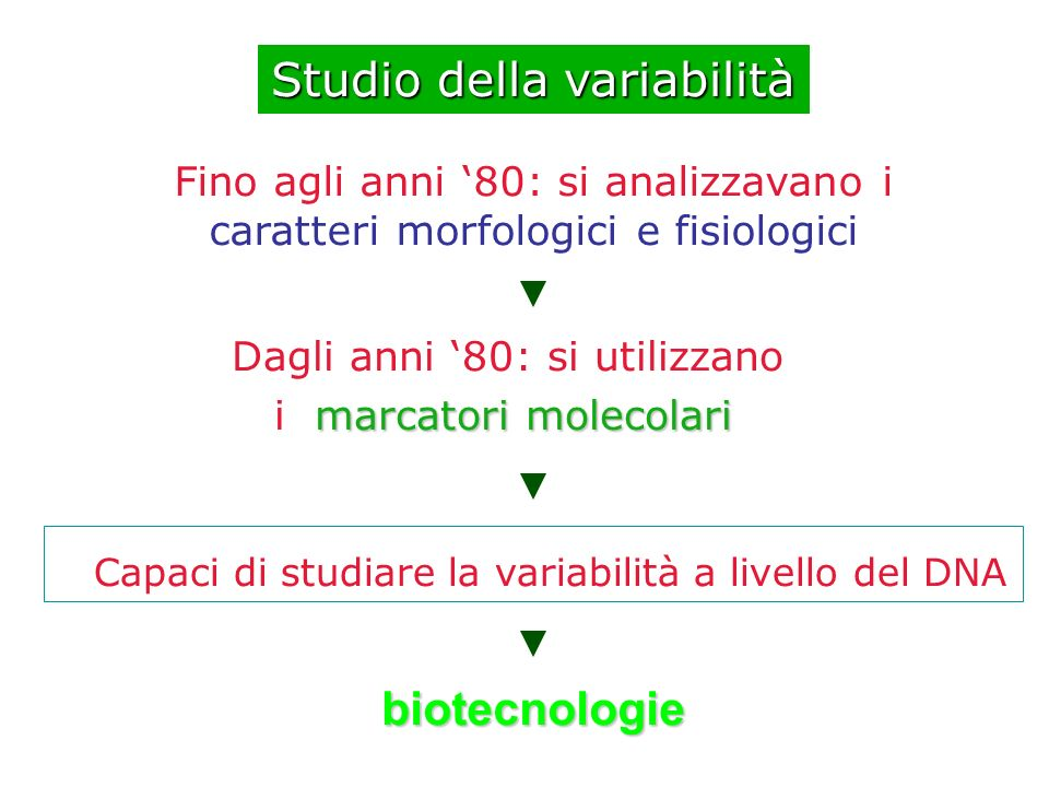 Studio della variabilità