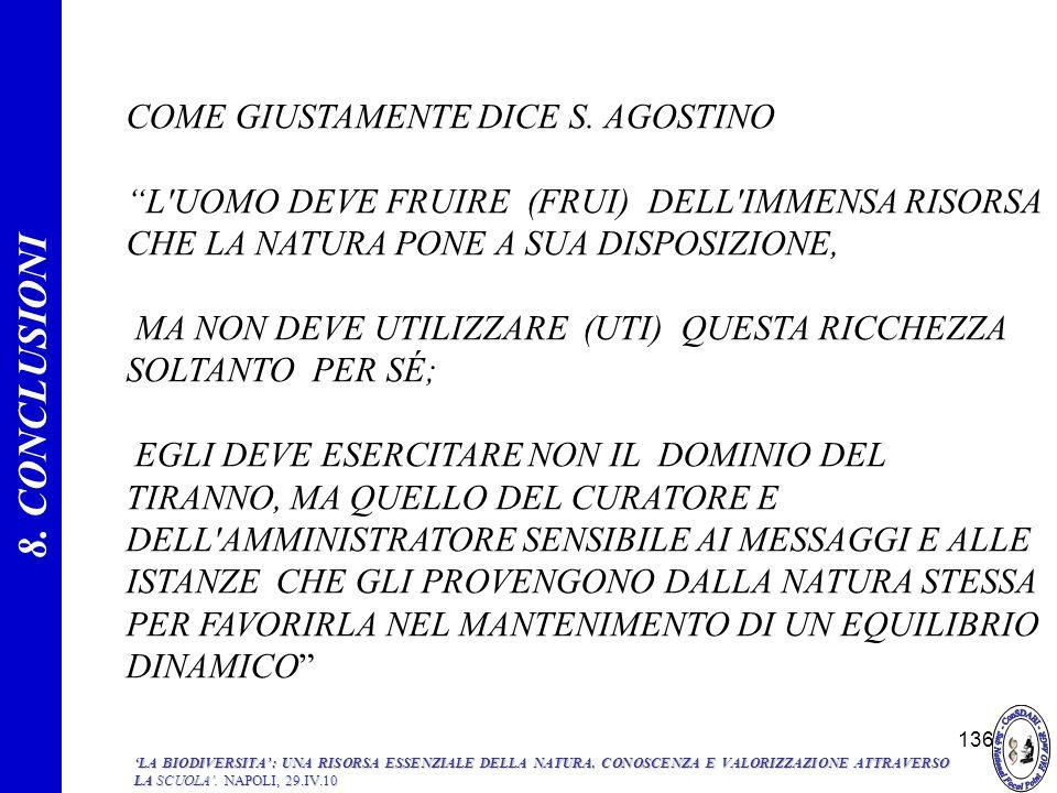 8. CONCLUSIONI COME GIUSTAMENTE DICE S. AGOSTINO