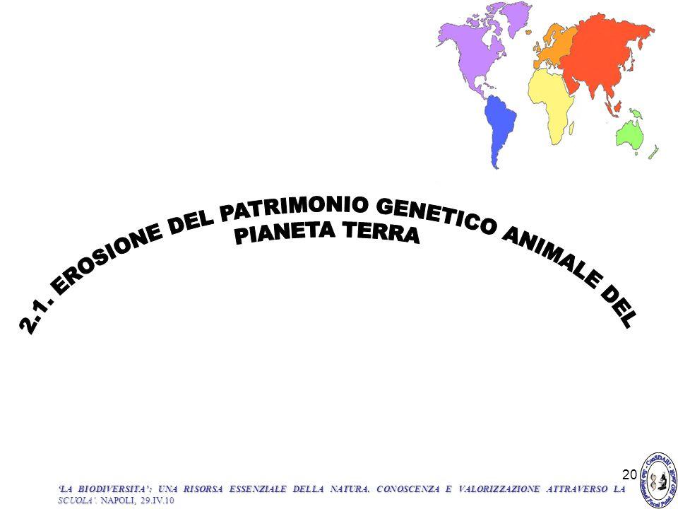 2.1. EROSIONE DEL PATRIMONIO GENETICO ANIMALE DEL