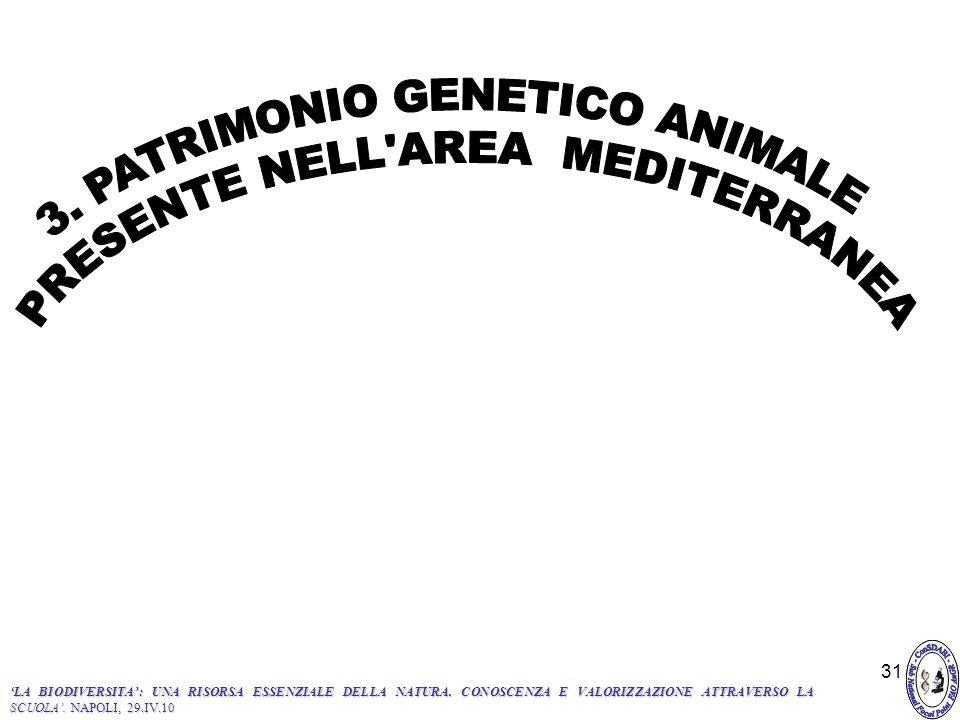 3. PATRIMONIO GENETICO ANIMALE PRESENTE NELL AREA MEDITERRANEA