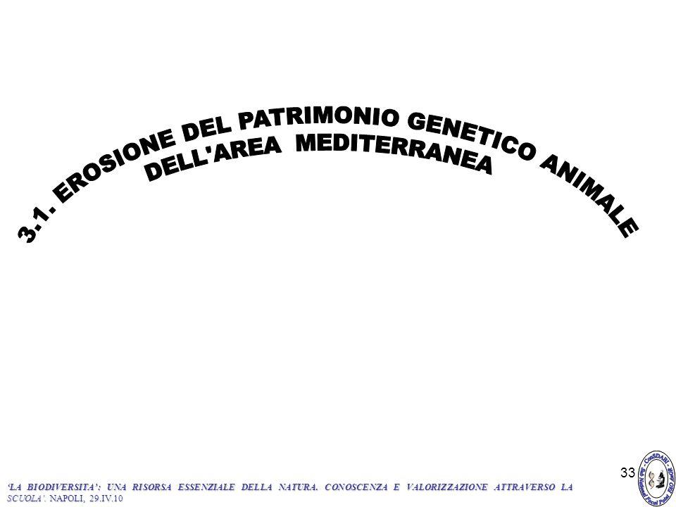 3.1. EROSIONE DEL PATRIMONIO GENETICO ANIMALE DELL AREA MEDITERRANEA