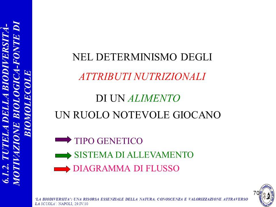 NEL DETERMINISMO DEGLI ATTRIBUTI NUTRIZIONALI