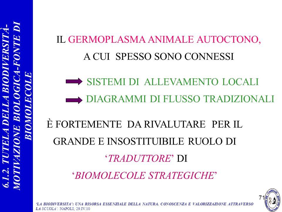 IL GERMOPLASMA ANIMALE AUTOCTONO, A CUI SPESSO SONO CONNESSI