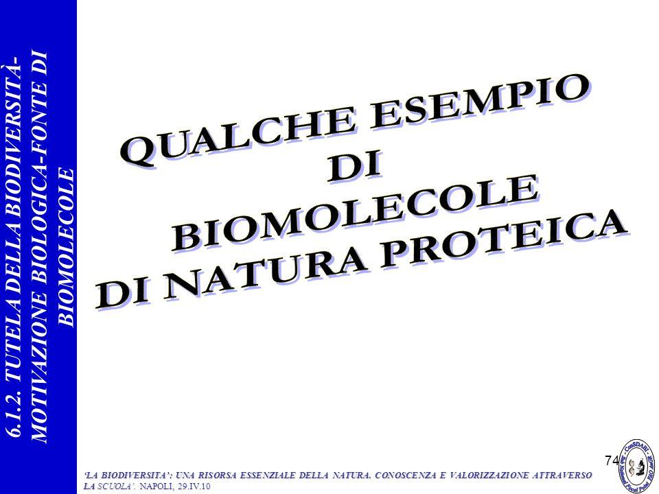 QUALCHE ESEMPIO DI BIOMOLECOLE DI NATURA PROTEICA