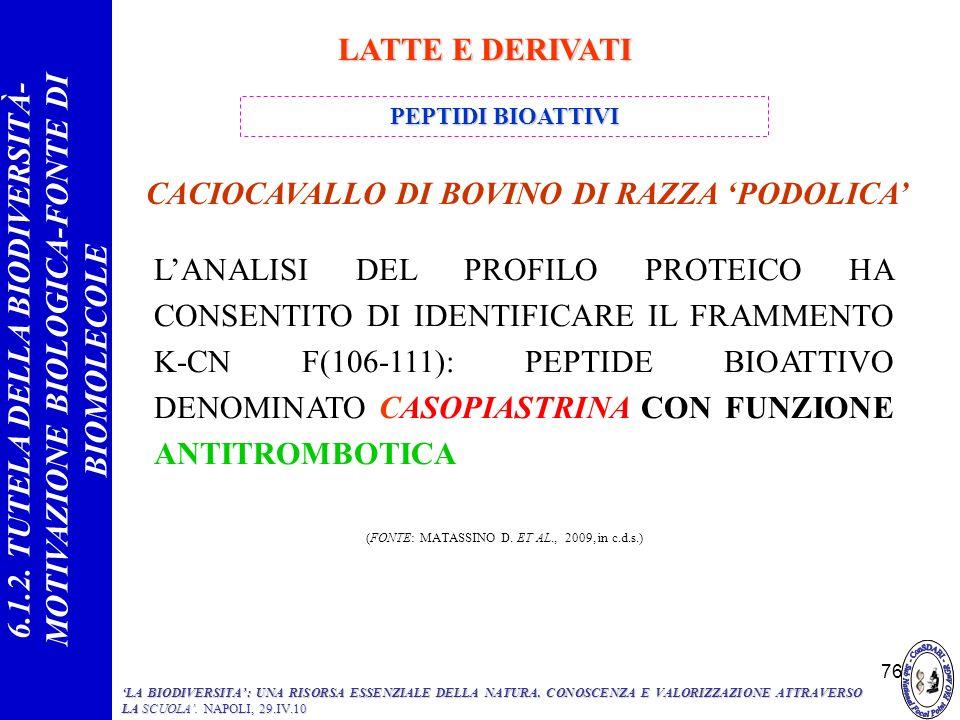 (FONTE: MATASSINO D. ET AL., 2009, in c.d.s.)