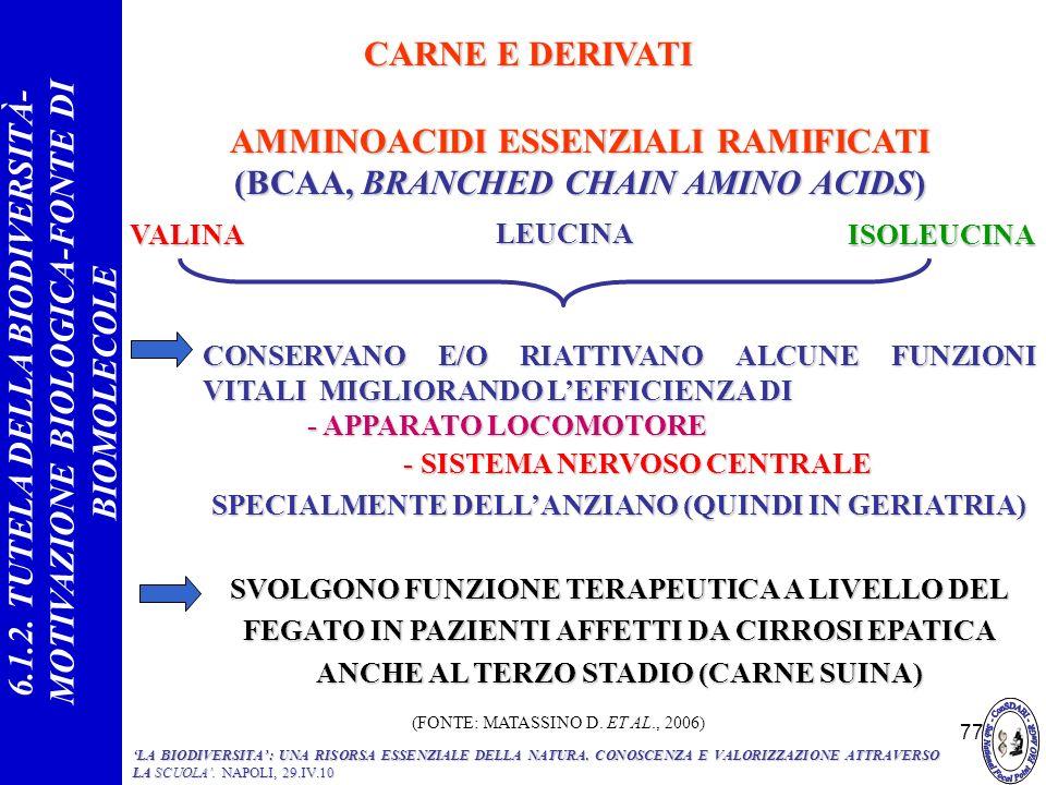 AMMINOACIDI ESSENZIALI RAMIFICATI (BCAA, BRANCHED CHAIN AMINO ACIDS)