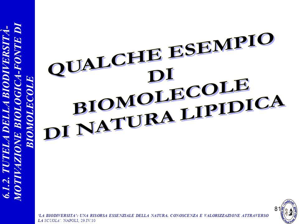 QUALCHE ESEMPIO DI BIOMOLECOLE DI NATURA LIPIDICA