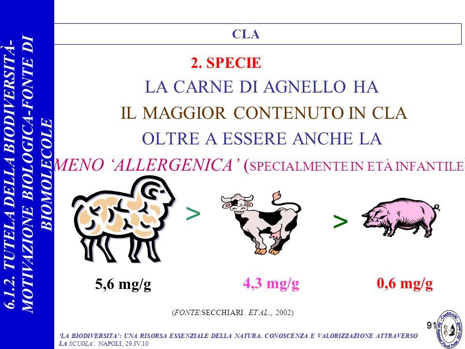 > < LA CARNE DI AGNELLO HA IL MAGGIOR CONTENUTO IN CLA