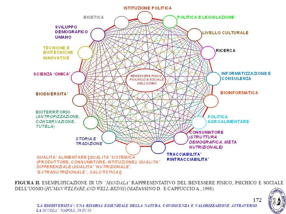 FIGURA II. ESEMPLIFICAZIONE DI UN 'MANDALA' RAPPRESENTATIVO DEL BENESSERE FISICO, PSICHICO E SOCIALE DELL'UOMO (HUMAN WELFARE AND WELL-BEING) (MATASSINO D. E CAPPUCCIO A., 1998).