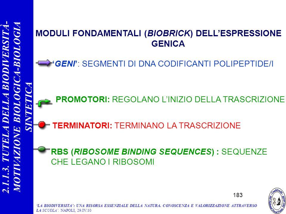 MODULI FONDAMENTALI (BIOBRICK) DELL'ESPRESSIONE GENICA