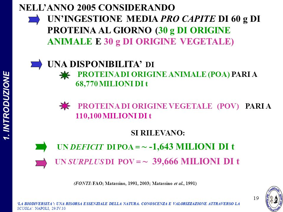 NELL'ANNO 2005 CONSIDERANDO