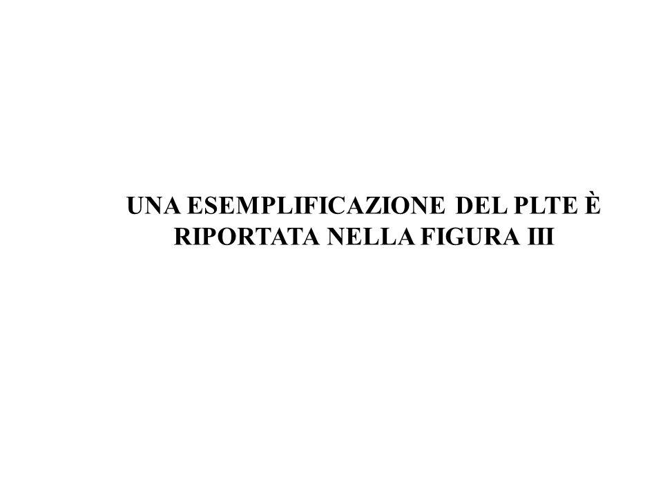 UNA ESEMPLIFICAZIONE DEL PLTE È RIPORTATA NELLA FIGURA III