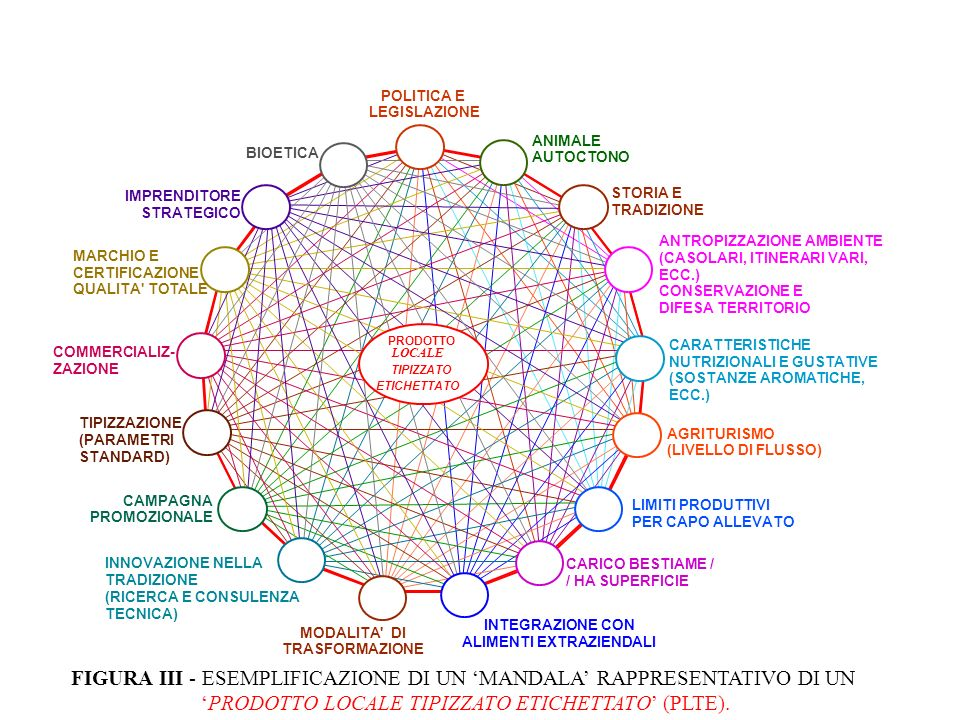 FIGURA III - ESEMPLIFICAZIONE DI UN 'MANDALA' RAPPRESENTATIVO DI UN