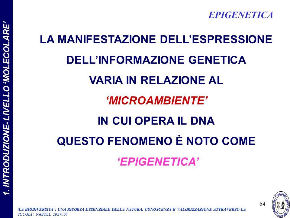 LA MANIFESTAZIONE DELL'ESPRESSIONE DELL'INFORMAZIONE GENETICA