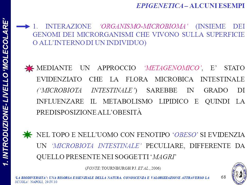 1. INTRODUZIONE- LIVELLO 'MOLECOLARE'