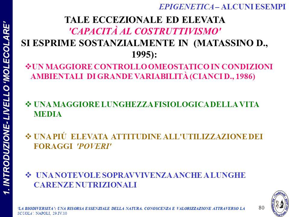 TALE ECCEZIONALE ED ELEVATA CAPACITÀ AL COSTRUTTIVISMO