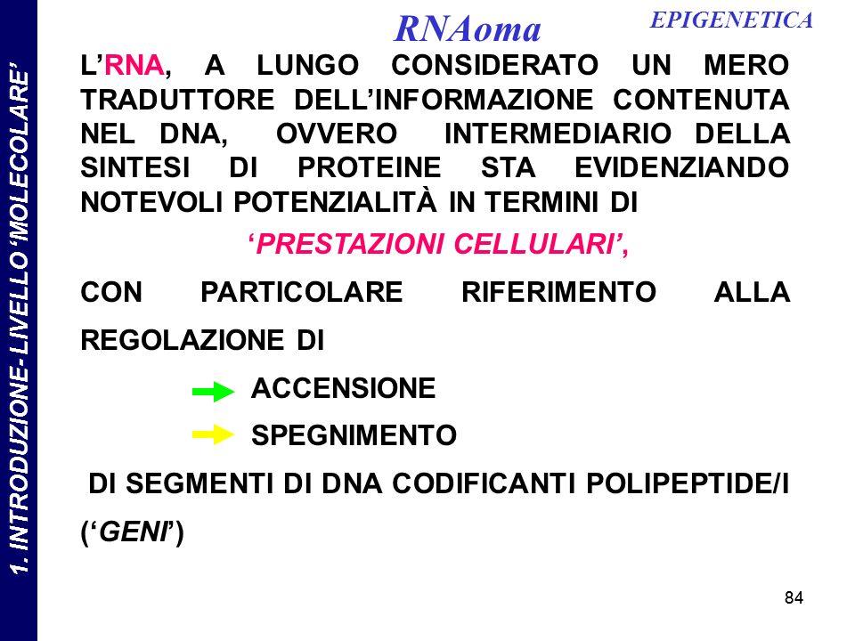 'PRESTAZIONI CELLULARI', 1. INTRODUZIONE- LIVELLO 'MOLECOLARE'