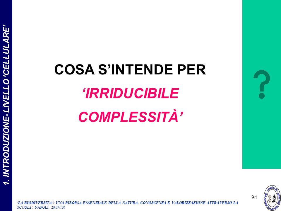 COSA S'INTENDE PER 'IRRIDUCIBILE COMPLESSITÀ'