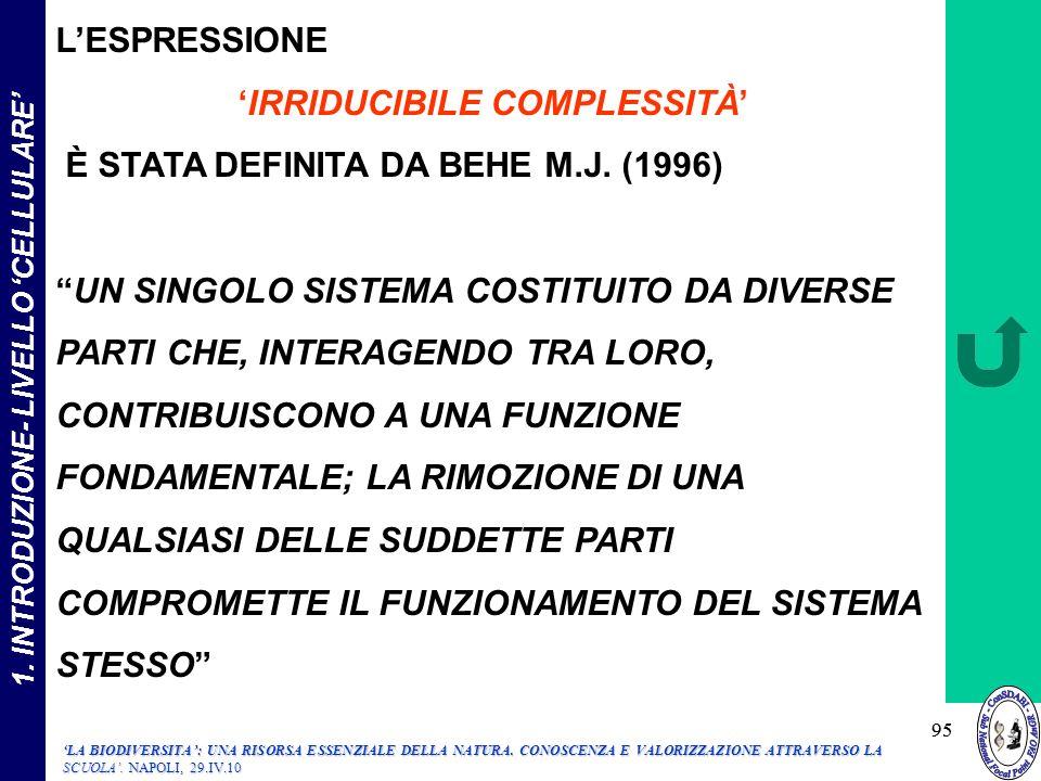 'IRRIDUCIBILE COMPLESSITÀ' 1. INTRODUZIONE- LIVELLO 'CELLULARE'